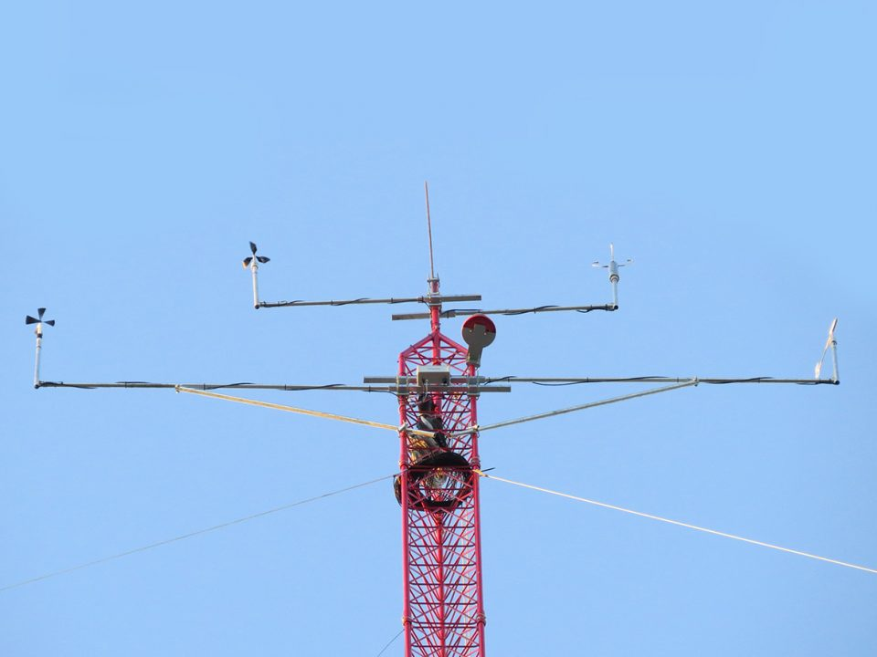 One year wind measurement campaign with seven 100-meter masts